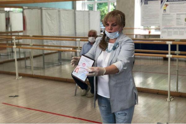 vybory-pamfilova
